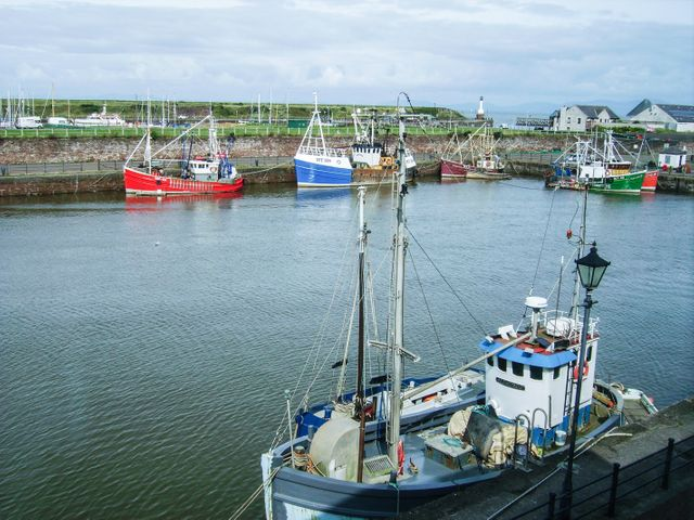 Harbour Side - 967037 - photo 1