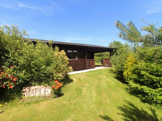 Maple Lodge - 974712 - photo 1