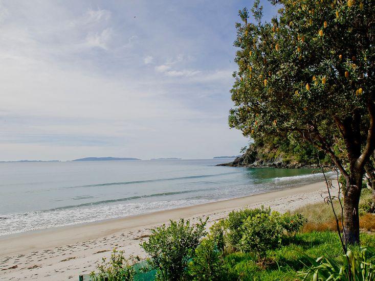 Absolute Beachfront Views