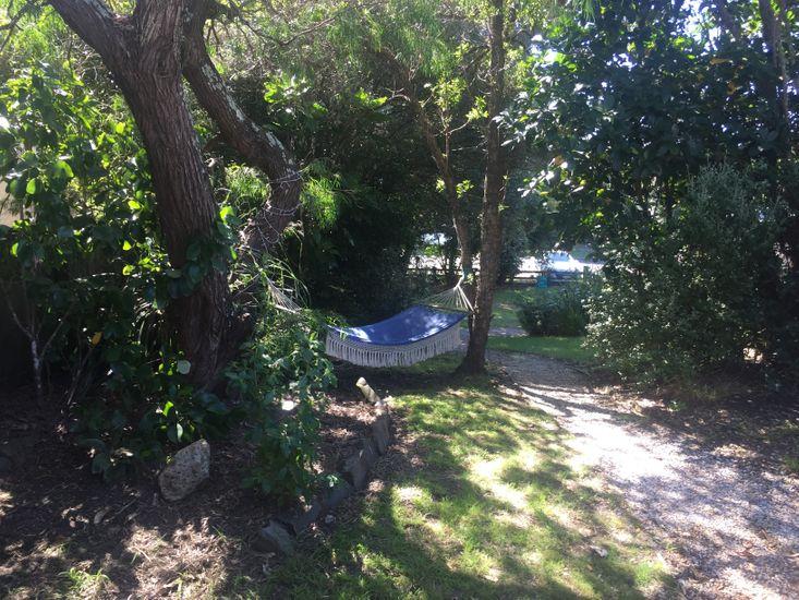 Backyard - Hammock
