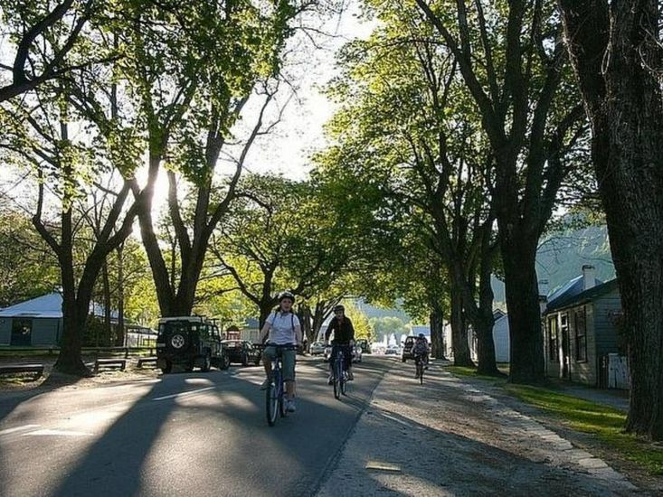 Bikes in Avenue - Courtesy of Discover Arrowtown