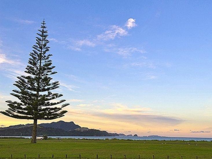 Big Sea Views - Whitianga Unit