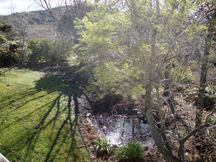 unfenced stream at the bottom of the garden