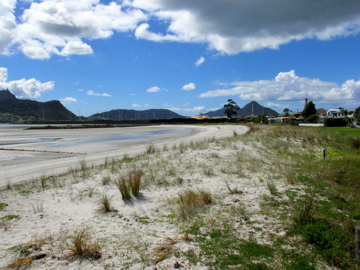 Beachfront Views