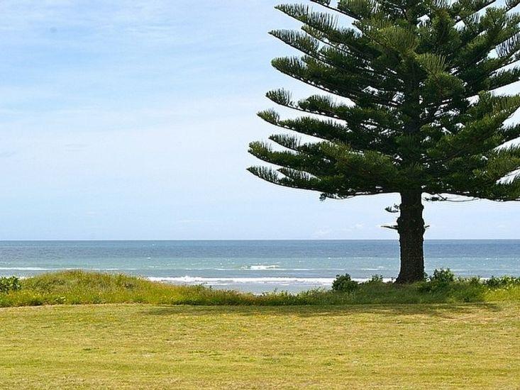 Ocean Bach - Ohope Beach Bach - Sea Views