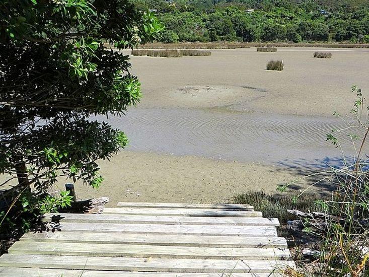 Estuary Access