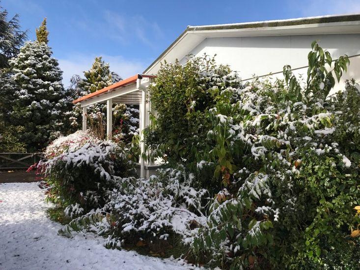 Oha - Ohakune Holiday Home - Garden in Winter