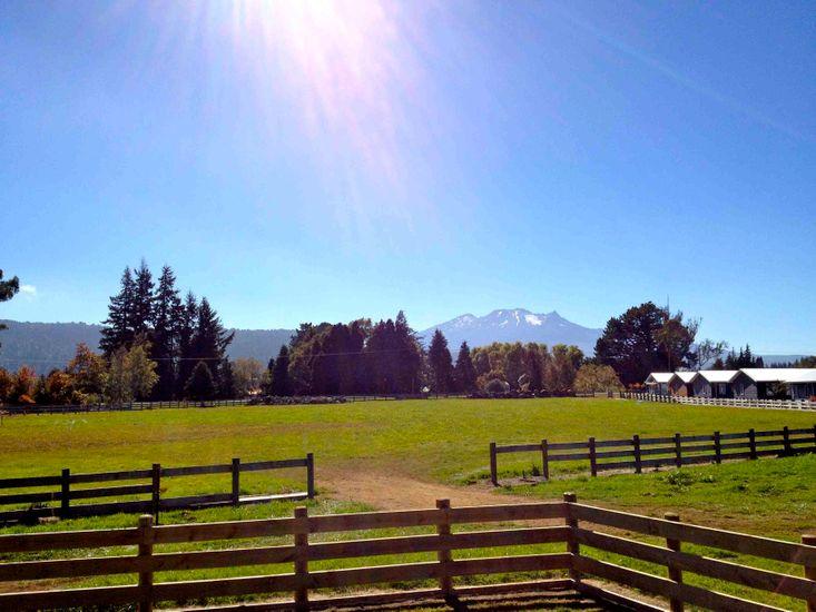 Mountain View - Ohakune Holiday Home