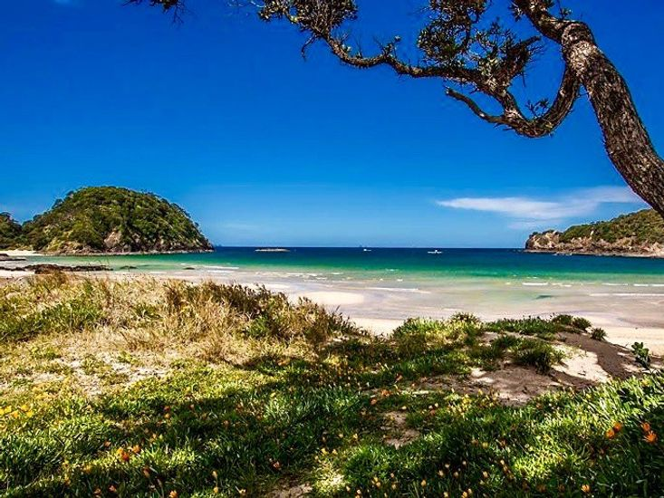 Matapouri Dunes - Matapouri Holiday Home - Matapouri Beach - 50m from front door