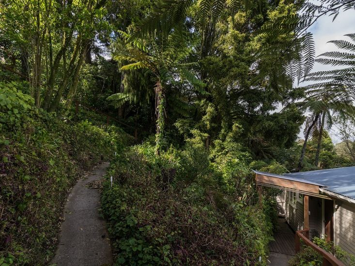 Pathway from House to Road