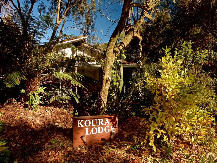 Koura Lodge