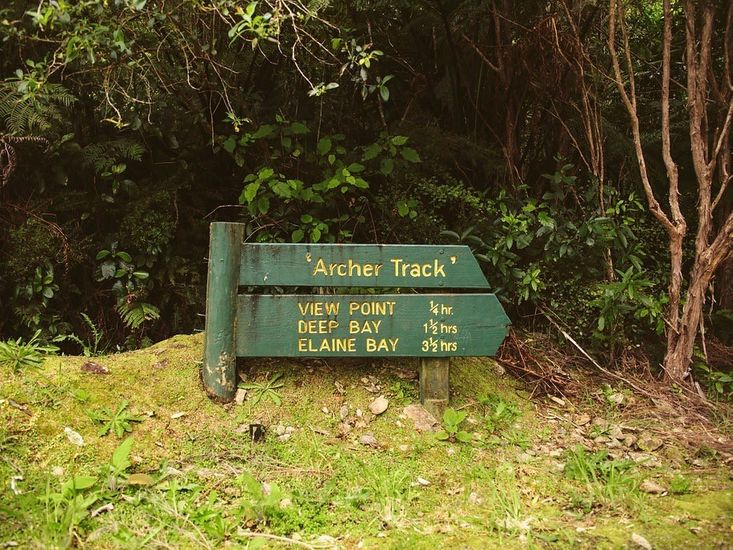 Local Walking Tracks