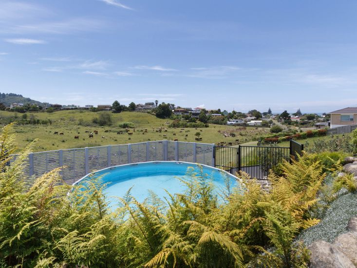 Open Spaces - Waihi Holiday Apartment