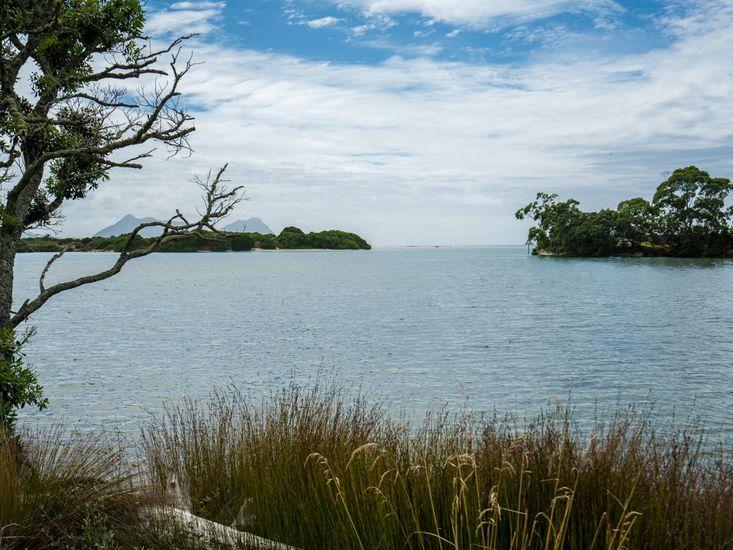Estuary Views - High Tide