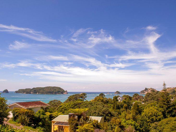 Tutaritari Treasure - Hahei Holiday Home  - views