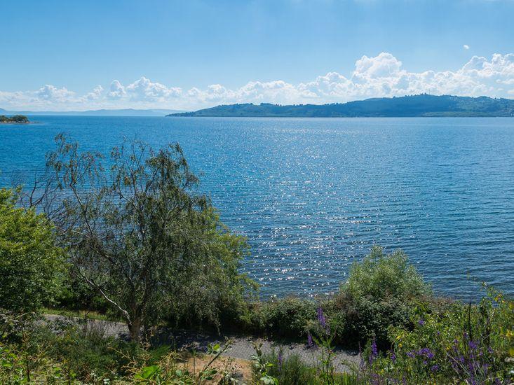 Lake Views - lakefront across road