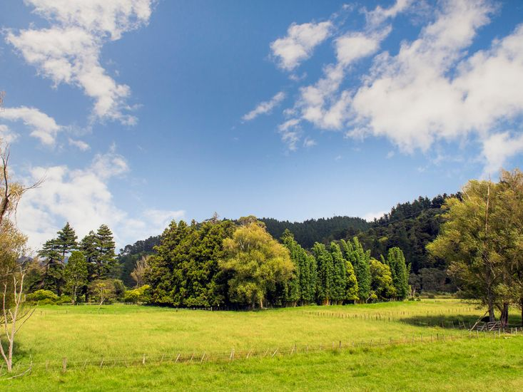 Rural Surrounding
