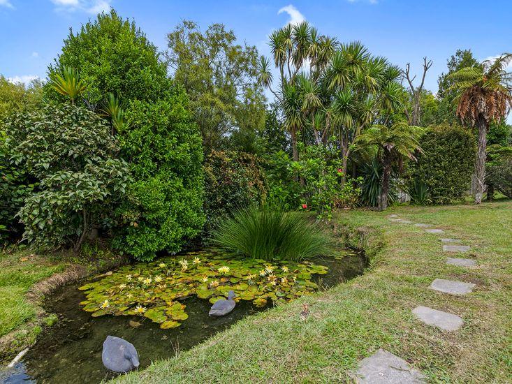 Yard (Unfenced Pond)