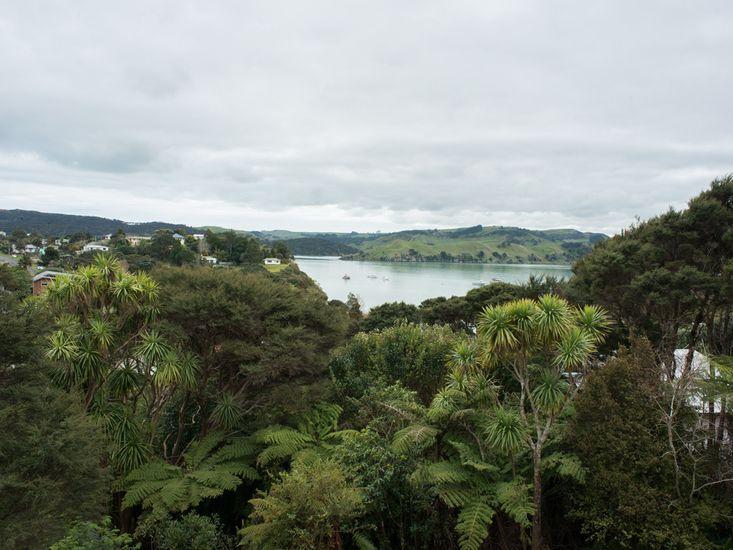 Bay and Bush Views