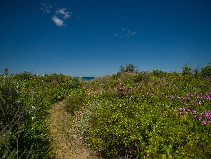 Private Path to the Beach!