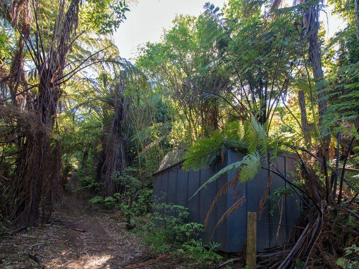 Bush Walkways