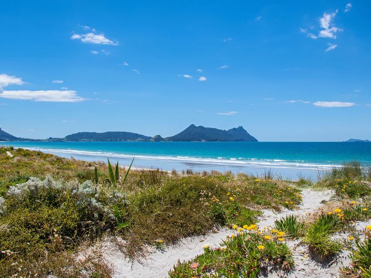 White sandy shores of Ruakaka Beach - not taken from property