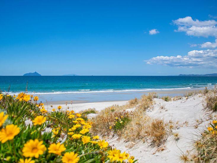 White sandy shores of Ruakaka Beach