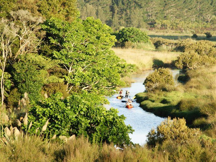 Kayak around to Mangawhai Heads!