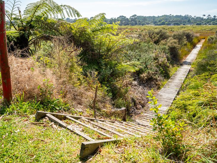 Access to the estuary walkway