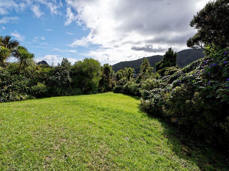 Large Grassy Yard
