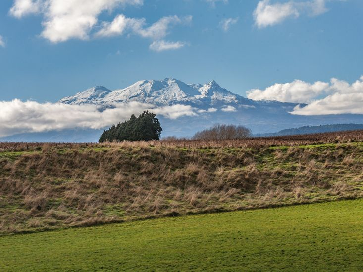 Views of Mt Ruapehu from the master bedroom