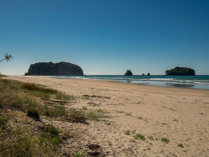 Whangamata Beach close by