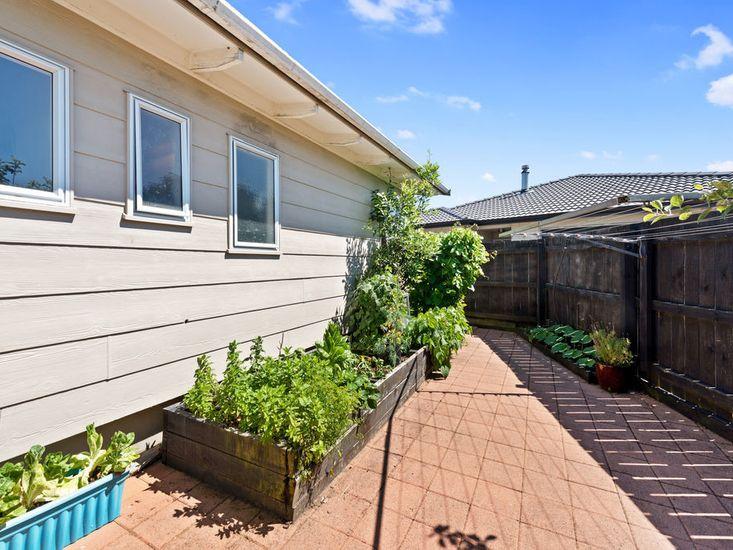 Sunny exterior and veggie garden