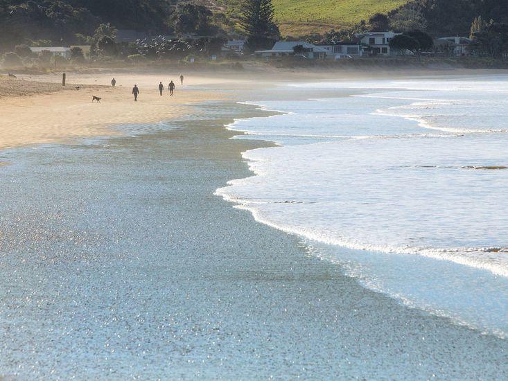 Short walk from the beach!