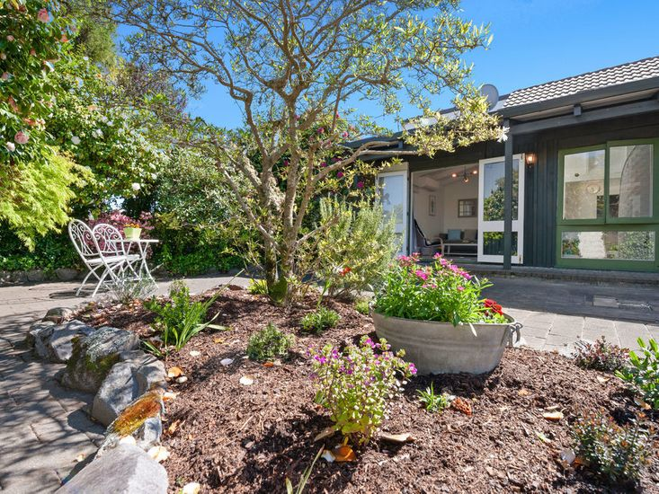 Sunny garden area
