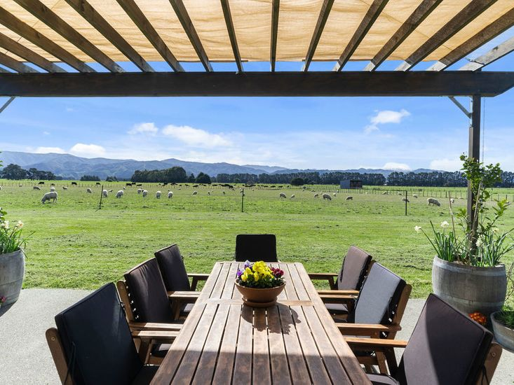 Outdoor Dining Area / Backyard View