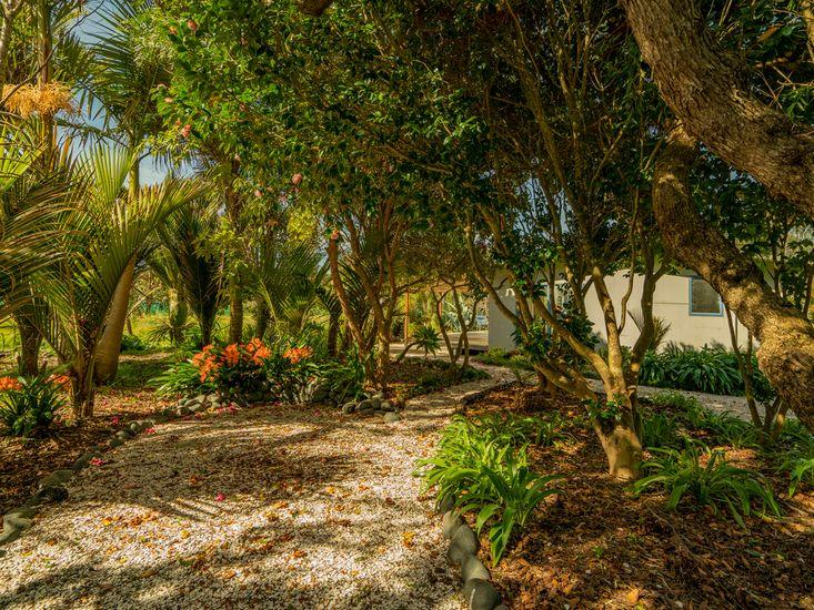 Bush walkway