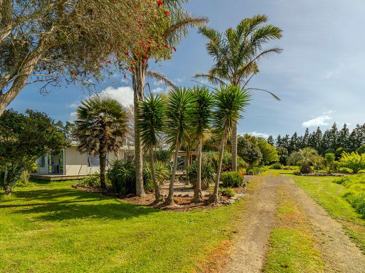 Orua Beach House - Driveway