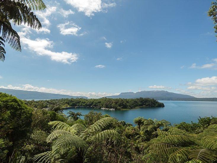 Stunning views of the lake and surround native bush